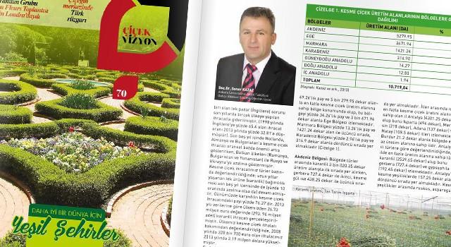 İller, Bölgeler ve Türler Bazında Türkiye Kesme Çiçek Sektörü