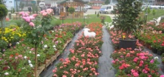 Çiçek Festivali Öncesinde Süs Bitkileri Tartışıldı